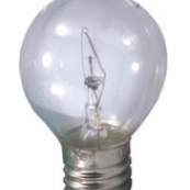 13607 40W S11 HIGH INTNSTY BULB
