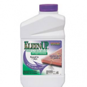 7461 KLEENUP QT CONCENTRATE    LO