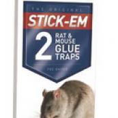 155N MOUSE/RAT GLUE TRAP PRE-BAITED