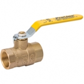 107-813NL BALL VALVE 1/2IPS