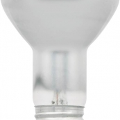 10077 35W R20 HALOGEN FLOOD