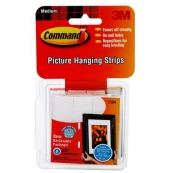 17204 PICTURE HANGING STRIPS M